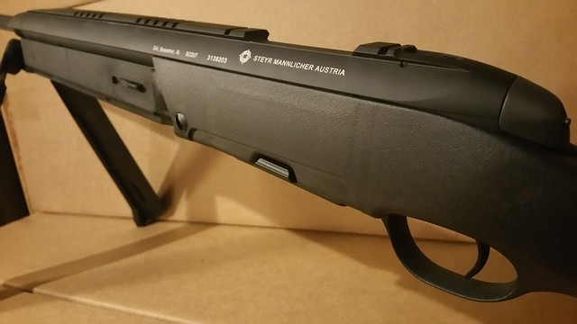 Steyr Arms Scout .308 Black