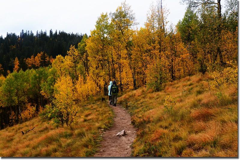 Colorado Trail (8)