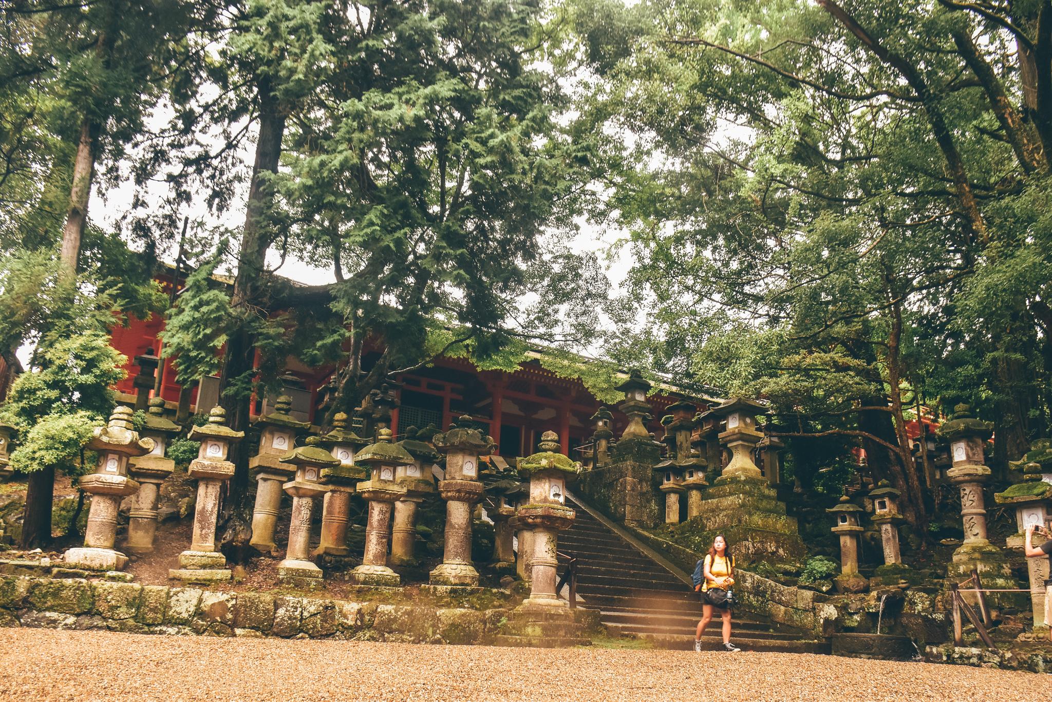 nara travel guide - 37
