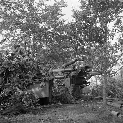 German 88 mm gun FlaK 36 in a wood near the Dutch town of Aalst 18th Sep 1944