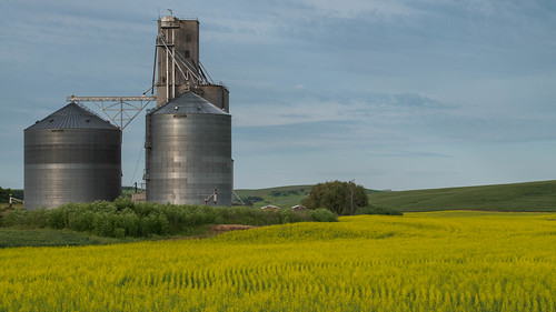 landscape yellow silo field dayton washington unitedstates us