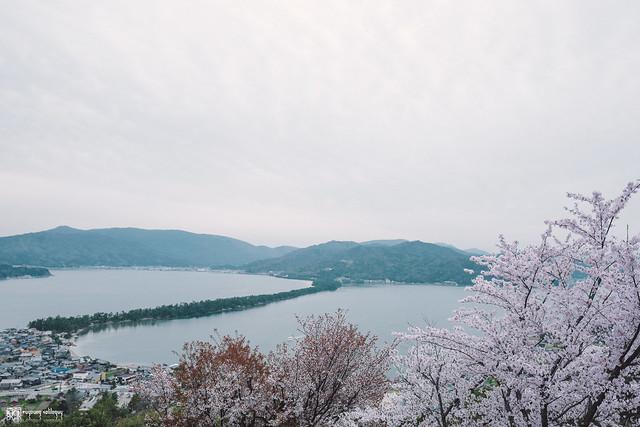 十年,京都四季 | 卷四 | 那兒春色滿城 | 32