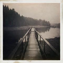 Maine In Sepia