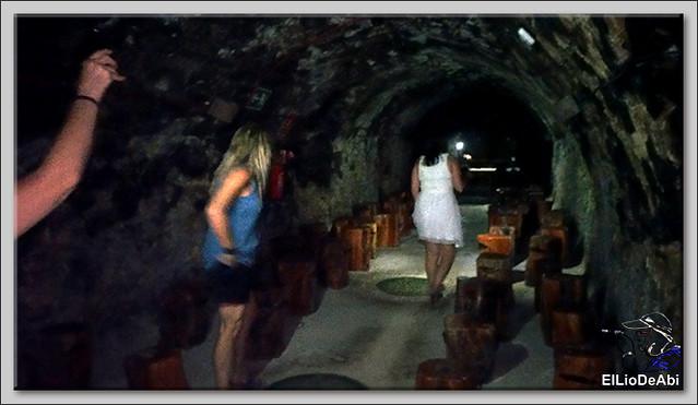 Conociendo recursos turísticos en la Ribera del Duero (16)