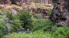 South Fork John Day Wild and Scenic River