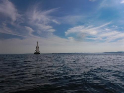 Kayaking Bellingham Bay-90