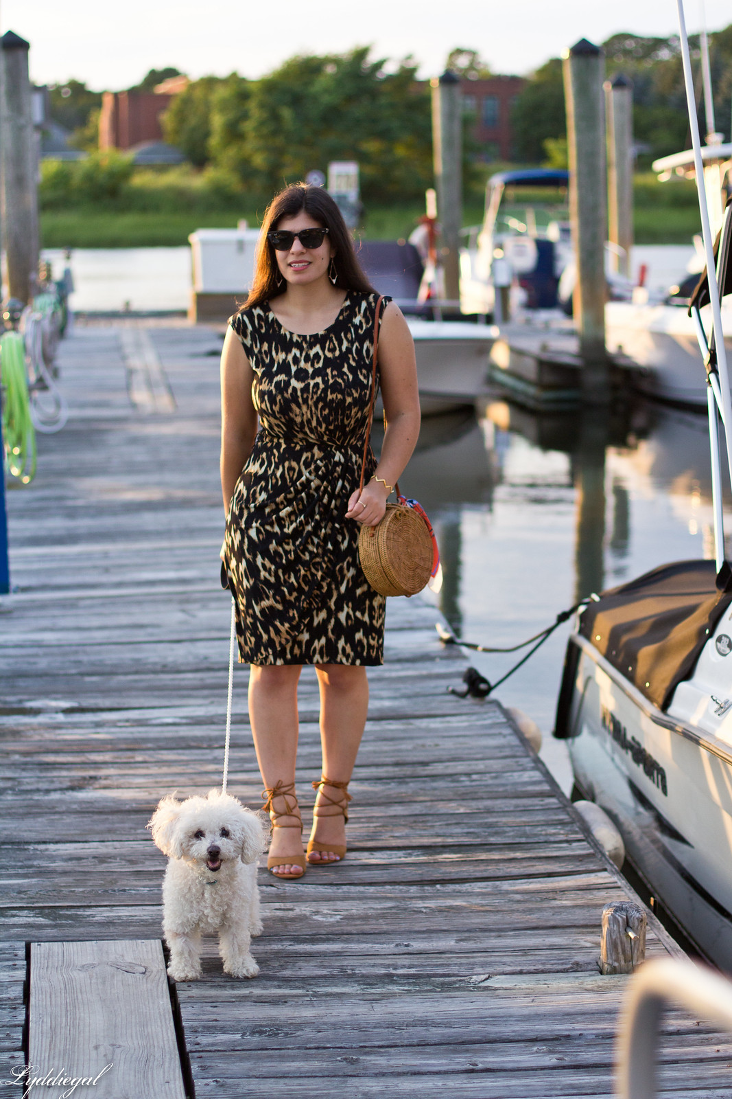 leopard sheath dress, round rattan bag, dog walking-1.jpg