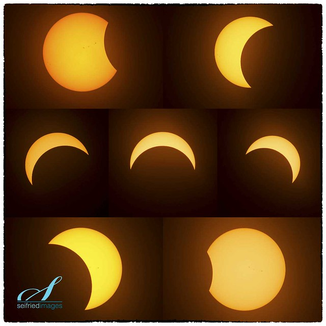 Aug 21 2017 solar eclipse collage