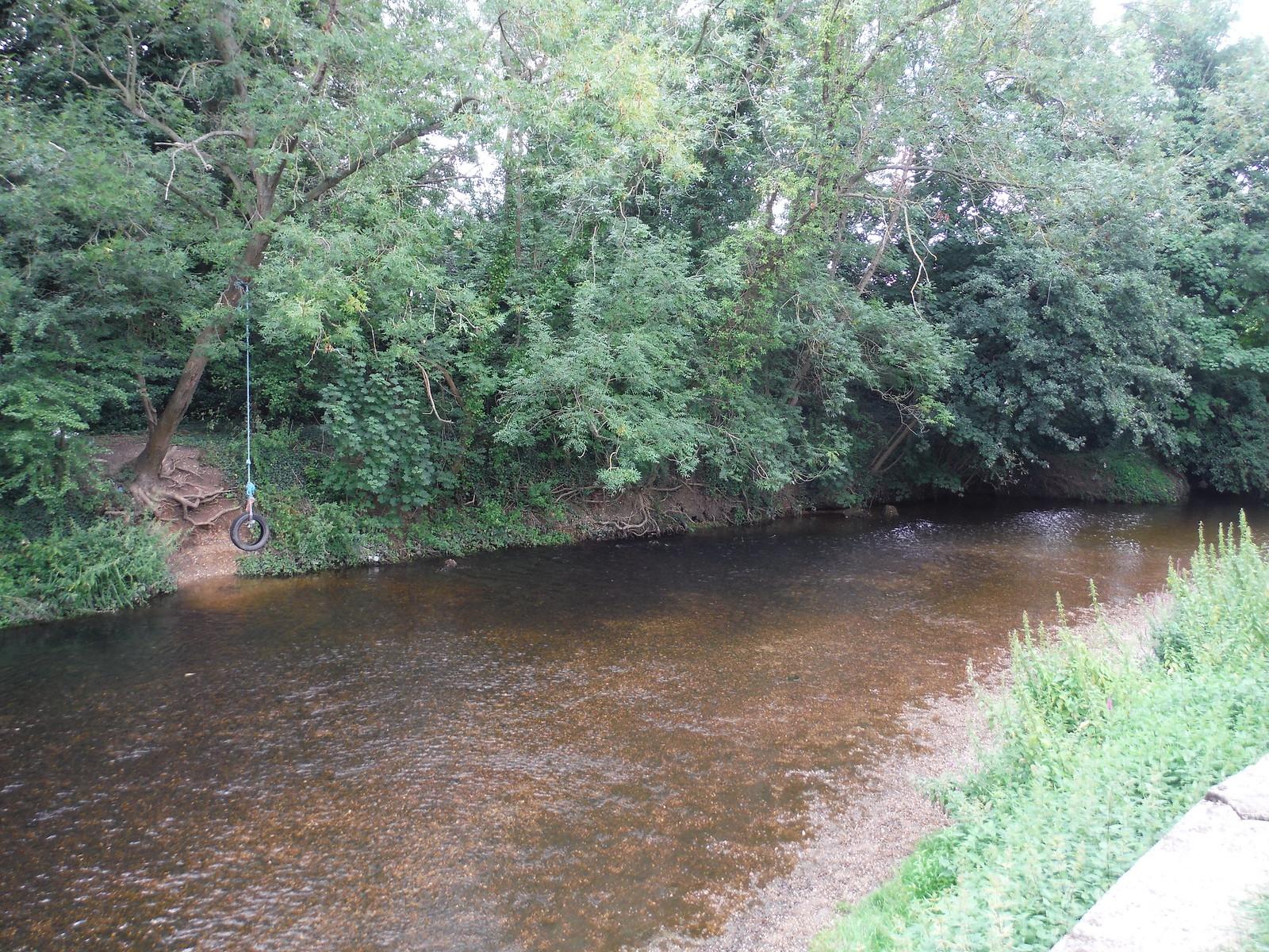 River Roding SWC Walk Short 11 - Wanstead Park