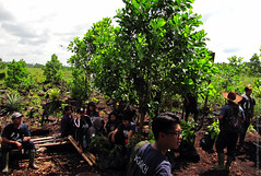 OFI Reforestation