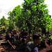 OFI Reforestation