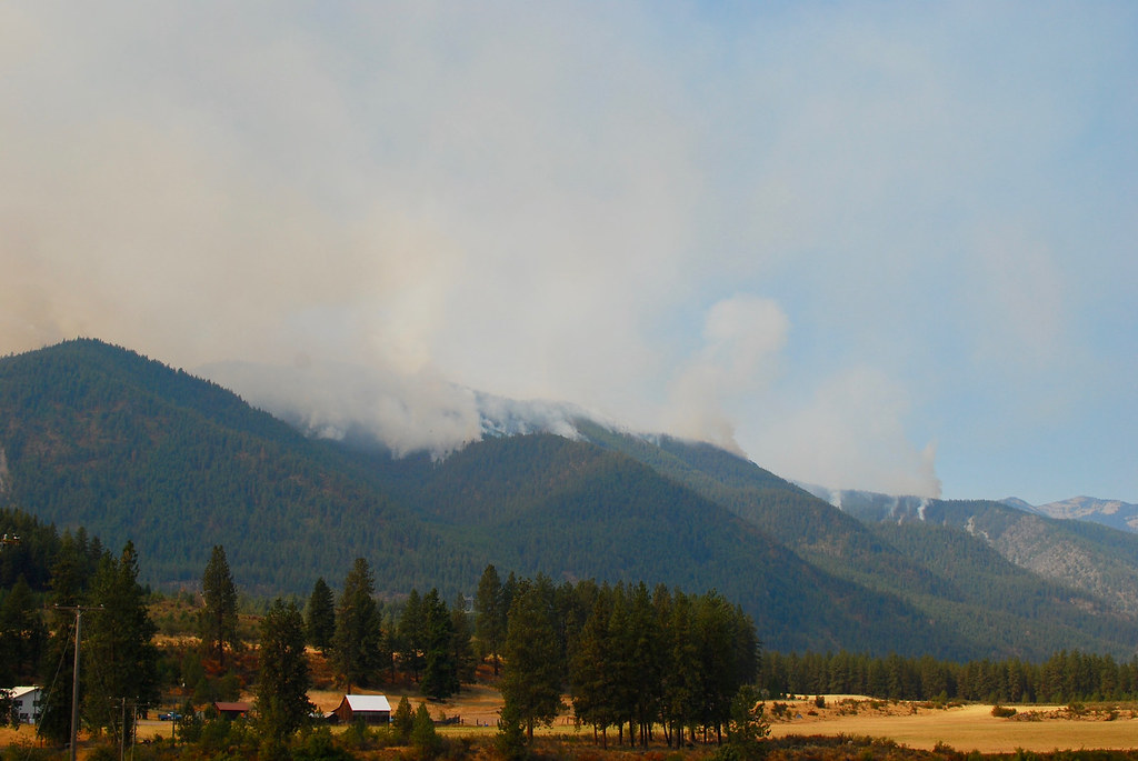 Sheep Gap Fire