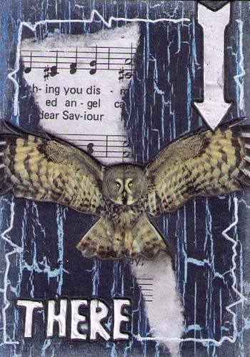 Hoot Owl 1of8