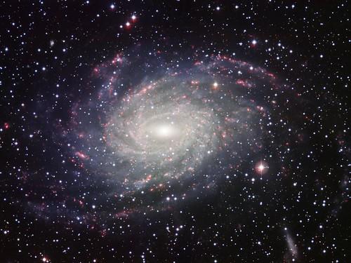 space_zps85230cdf