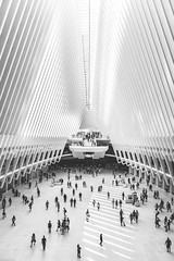 🚶🚶♀️this is what a $4 billion dollar train station looks like