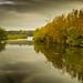 Clumber park, Nottinghamshire, England