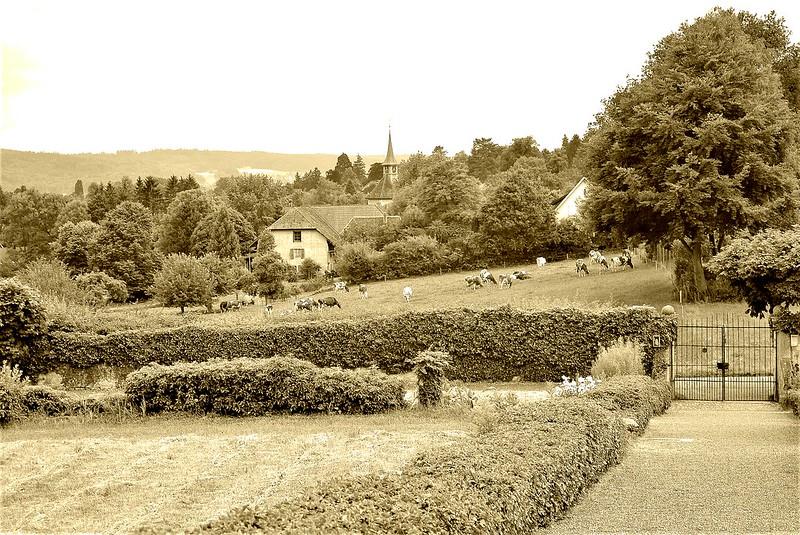 Castle Waldegg 02.07 (20)