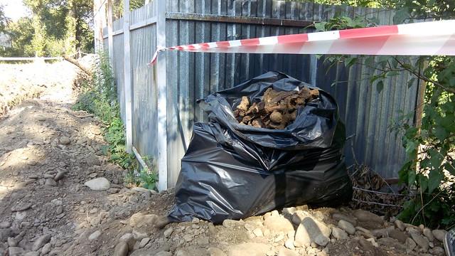 Поруч із міським озером у Франківську виявили масове поховання періоду 40-х років