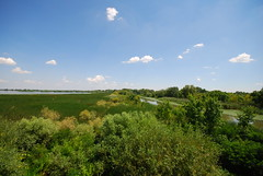 Tisza Lake View from the Observatory Tower