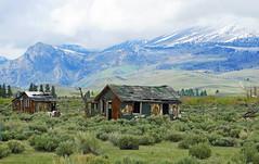 Someone had a Dream, Sierra Nevada Foothills, CA 2015