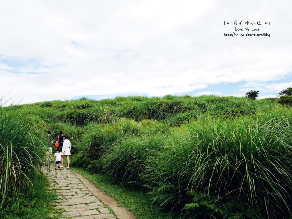 陽明山一日遊景點推薦絹絲瀑布步道 (21)