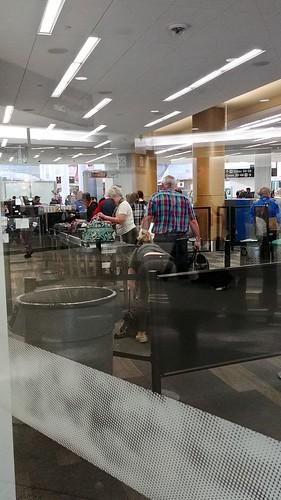 Cat going through TSA