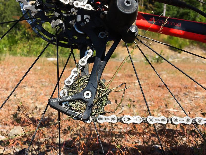 Vernonia Stub Singletrack Century-7.jpg