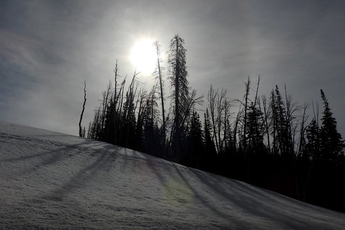 travel wyoming roadtrip usa dubois fremontcounty fremont landscape landscapes mountain mountainside bluesky sky clouds snow sunrise sun pine pinetrees pines silhouette outdoor