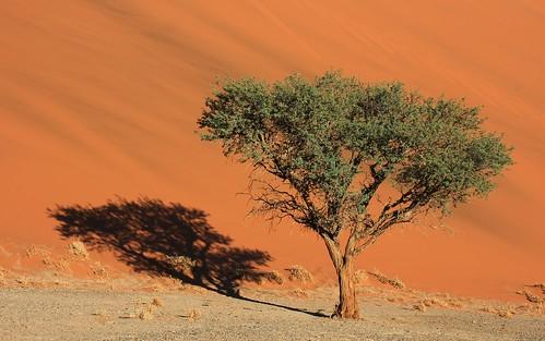 Sossusvlei - Namibia (32)