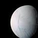 Enceladus: Ocean Moon