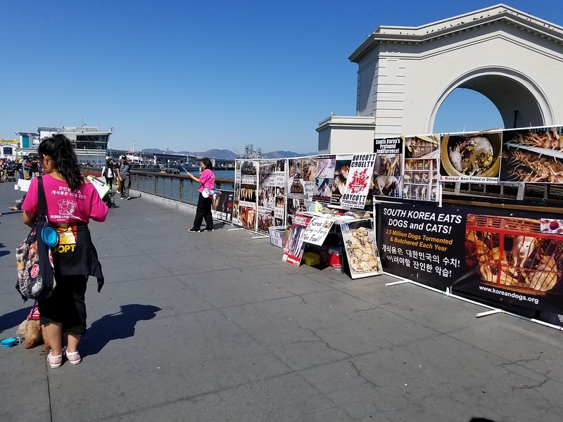 San Francisco, Fisherman's Wharf Leafleting Event – August 26, 2017