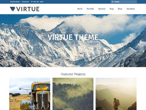 virtue_t_w