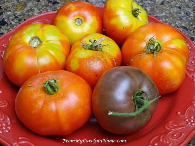 Tomatoes at From My Carolina Home