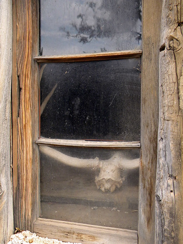 Skull artfully placed in an old window on a movie set in Kanab, Utah