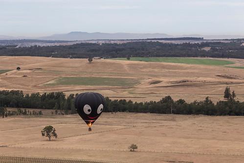 Hunter Valley Balloon Fiesta 27