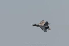 F-22 Raptor Turn