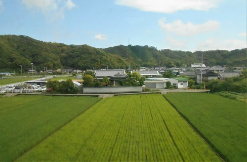 jp-Kochi-Nahari-train (3)
