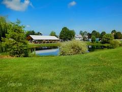Pond at Lake Farmpark