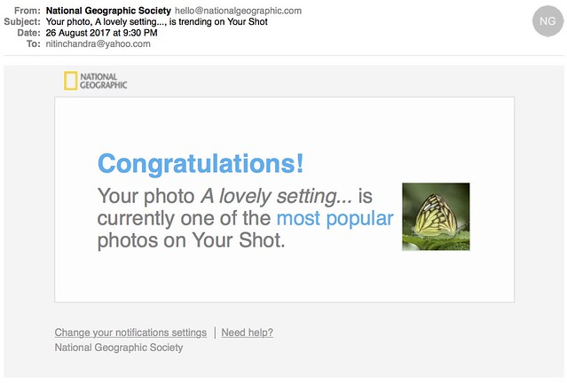 Your photo A lovely setting is trending on Your Shot