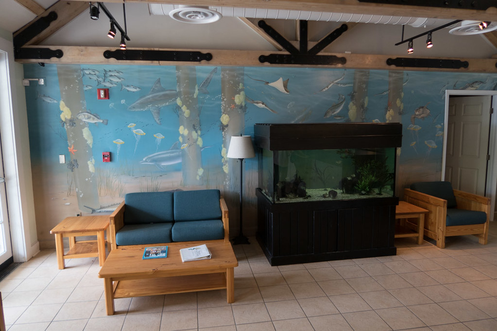 Lobby at office for First Landing State Park
