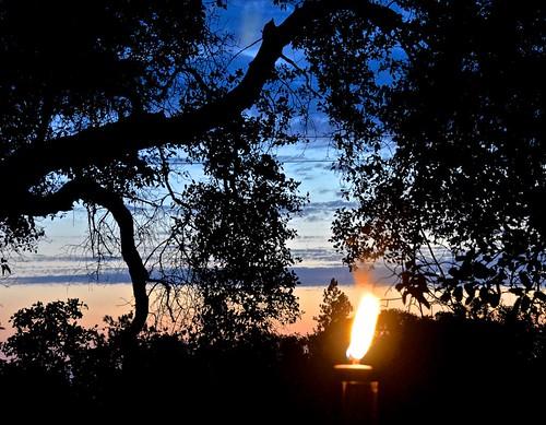 cowboycampfire davestamey hopkins torch redmuleranch fiddletown sunset