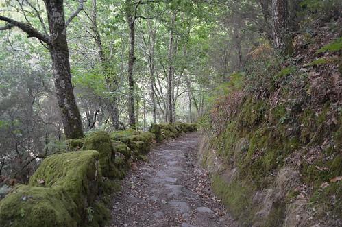 Caminho do Prado V