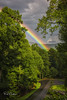 Rainbow by Reid Northrup