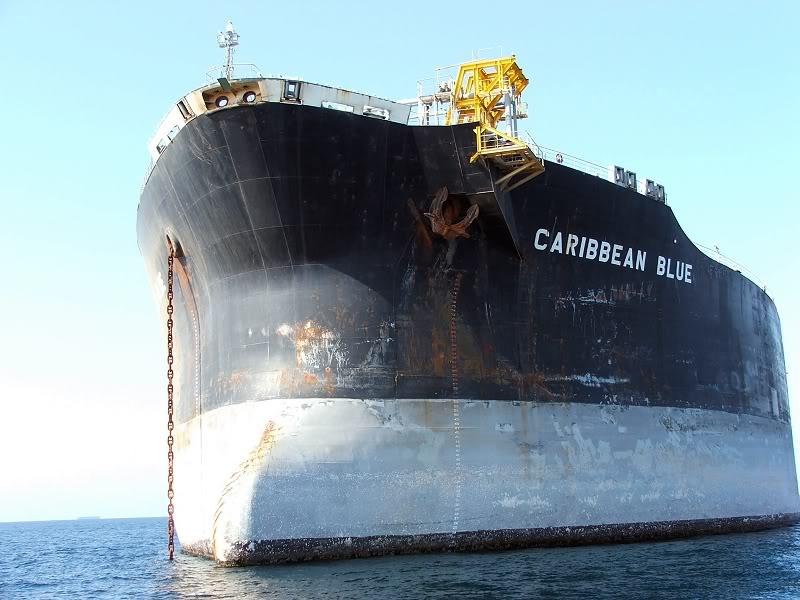 Caribbean Blue-3