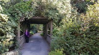 Finnerty Arch