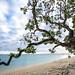 General Photos: Cook Islands