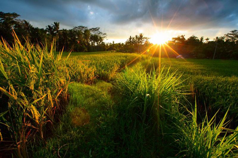 Sunrise Tanjung Layar