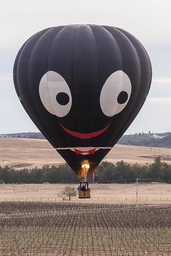 Hunter Valley Balloon Fiesta 21