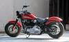 Harley-Davidson 1745 SOFTAIL SLIM FLSL 2019 - 17