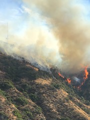Major Emergency Brush Fire in La Tuna Canyon